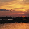 Sunrise Over Delacroix Island by Medford Taylor