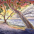 Sunset At Anaehoomalu Bay by Fay Biegun - Printscapes