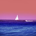 Sunset Sailboat by Bill Cannon
