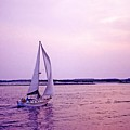 Sunset Sailing by Bill Jonscher