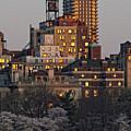 Sunset Spring Nyc by Robert Ullmann