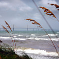Sunshine Skyway Bridge Viewed From Fort De Soto Park by Mal Bray
