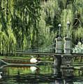Swan Boats by Lisa Reinhardt