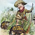 T. Roosevelt Cartoon, 1909 by Granger