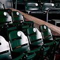 Take Me Out to the Ball Game Print by Michelle Calkins