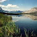 Talbot Lake by Shirley Sirois