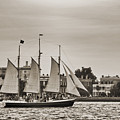 Tall Ship Schooner Pride Off The Historic Charleston Battery by Dustin K Ryan