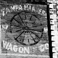 Tampa Harness Wagon N Company by David Lee Thompson