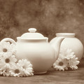 Teapot With Daisies I by Tom Mc Nemar