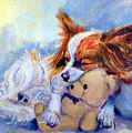 Teddy Hugs - Papillon Dog by Lyn Cook