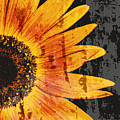 Textured Sunflower by Cathie Tyler