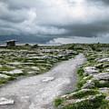 The Dolmen In The Burren by Menega Sabidussi