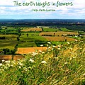 The Earth Laughs In Flowers by Jen White