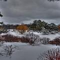 The Garden In Winter by David Bearden