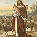 The Good Shepherd by John Lawson