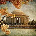 The Jefferson Memorial by Lois Bryan