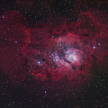 The Lagoon Nebula by Robert Gendler