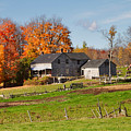 The Old Farm In Autumn by Louise Heusinkveld