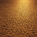 The Sun Reflects Off This Parched Lake by Bill Hatcher