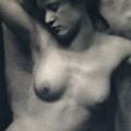 The Torso by White and Stieglitz