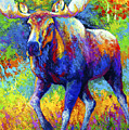 The Urge To Merge - Bull Moose by Marion Rose