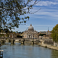 The Vatican By Day by Michelle Sheppard