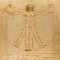 The Vitruvian Man by