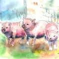 Three Little Pigs by Arline Wagner