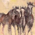 Through A Horses Ears by Ron Patterson