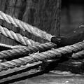 Tied Down by Susanne Van Hulst