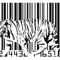 Tiger Barcode by Michael Tompsett