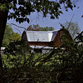 Tin Roofed Barn by Richard Gregurich