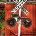 Train - Yard - Railroad Crossing by Mike Savad