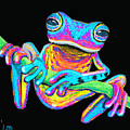 Tropical Rainbow Frog On A Vine by Nick Gustafson