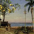 Tropical Scene by Albert Bierstadt