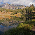 Trout Lake, Yellowstone National Park by DBushue Photography