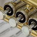 Trumpet Valves by Frank Tschakert
