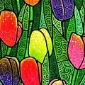 Tulip Glory by Jim Harris