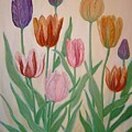 Tulips by Ben Kiger
