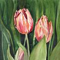Tulips  by Irina Sztukowski