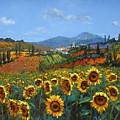 Tuscan Sunflowers by Chris Mc Morrow