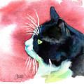 Tuxedo Cat Profile by Christy  Freeman