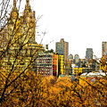 Urban Autumn In Nyc by Linda  Parker