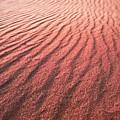 Utah Coral Pink Sand Dunes by Ryan Kelly