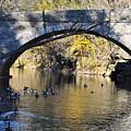 Valley Green Bridge by Bill Cannon