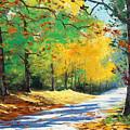 Vibrant Autumn by Graham Gercken