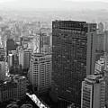 View Of Sao Paulo by Jacobo Zanella