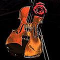 Violin Extreme by Marsha Heiken