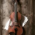 Violin by Garry Gay