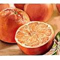 Vitamin C by Irina Sztukowski